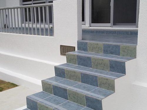 新川戸建て外観 屋外階段(外観)
